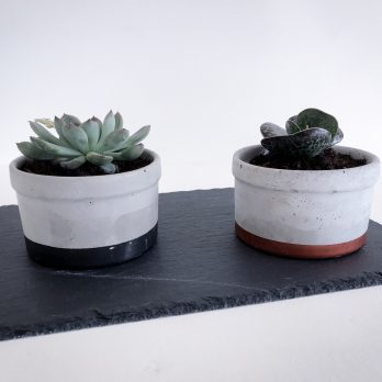 Concrete Planter – Royal