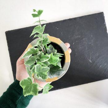 Concrete Planter – Bolton