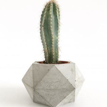 Geometric Concrete Planter – Cambridge