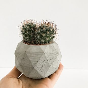 Geometric Concrete Planter – Brighton