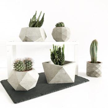 Geometric Concrete Planters Set-5