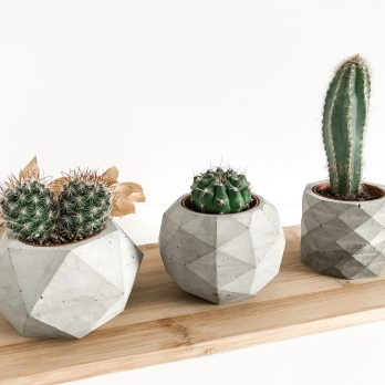 Geometric Concrete Planters Set-3